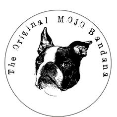 Our Boston Terrier, Dexter - the MOJO front dog! Dog Bandana, Bandanas, Dexter, Pugs, Dog Breeds, Boston Terrier, Labrador, Colours, Silk