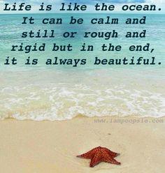 Life Is Like The Ocean Essay img-1