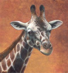 Giraffe Portrait by ~DragonosX on deviantART