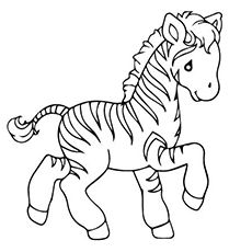zoo animals coloring pages zebra - photo#18