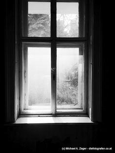 Fenster zum Hof. Vienna, Insight, Windows, Driveway Entrance, House, Window
