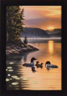 Edge Of The Sun by Rick Kelley 14x20 Loons Lake Sunrise Sunset Framed Art Print Wall Décor Picture, http://www.amazon.com/dp/B00AWF9LOE/ref=cm_sw_r_pi_awd_sEsbsb0BQAFV8