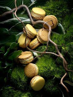 I love Macaron ♡、。・:*:・゜