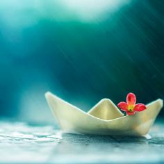 Photo Little boat and summer rain by Ashraful Arefin on 500px