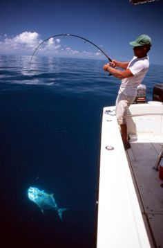 Wrestling with the catch of the day in the Gulf of Mexico (1991). | Florida Memory