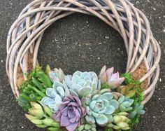 "12"" Succulent Willow Wreath (made to order)"