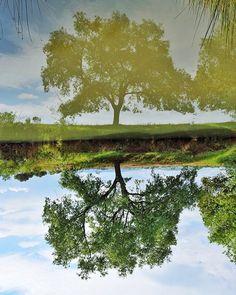 Reflejando el reflejo  #reflejodelreflejo #photography