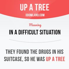 """Up a tree"" means ""in a difficult situation"". Example: They found the drugs in his suitcase, so he was up a tree. #english #idioms"