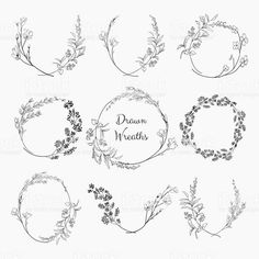 set of 9 black doodle hand drawn decorative outlined wreaths with branches herbs plants leaves and flowers florals. Free Vector Graphics, Free Vector Art, Circle Drawing, Flower Circle, Flower Crown, Wreath Drawing, Flower Logo, Stock Foto, Flower Clipart