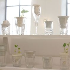 Make Me Competition   Alicja Patanowska collects glassware discarded on the streets of London in the early hours of the morning, and hand-throws bespoke ceramic forms to give each one a new function as a plant pot or vase, hence the name of the project: Plantacja (Plantation).