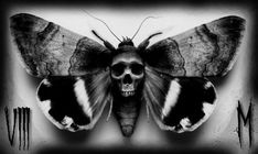 Death moth by Mylesjosh