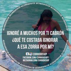 CorridosVip