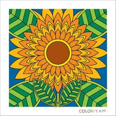 Colorfy coloring page