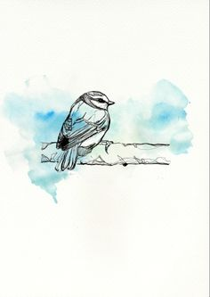 Bird Illustration  - Pernille Kaab