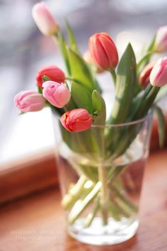 tulips by lesley Tulips Garden, Tulips Flowers, My Flower, Fresh Flowers, Spring Flowers, Planting Flowers, Beautiful Flowers, Pink Tulips, Deco Floral