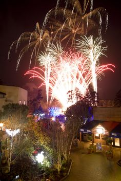Join us every Wednesday and Sunday during Winter Wonderland for our Festive Fireworks.  Sherwood Forest - Wednesday and Sunday at 6pm Elveden Forest - Wednesday and Sunday at 5.30pm Longleat Forest - Tuesday and Sunday at 6pm Whinfell Forest - Tuesday and Sunday at 5.30pm  Winter Wonderland at Center Parcs - a magical world of festive fun