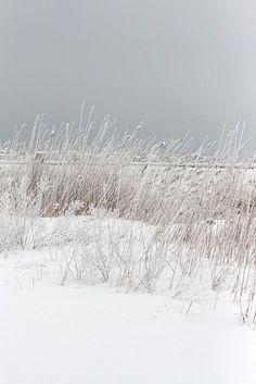 Snow on the beach | Beach Living