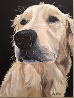 Golden retriever art print from original by HippieHoundUSA on Etsy