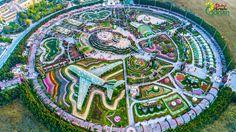 Dubai-Miracle-Garden---aerial-view
