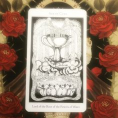 "Skywatch Tarot on Instagram: ""#dailytarotcard Ace of Cups ~ keep your eyes and ears open, good news is coming your way. Fresh starts, new beginnings, abundance. #tarot…"" Tarot Meanings, Fresh Start, New Beginnings, Tarot Cards, Good News, Abundance, Roots, Ears, Instagram"