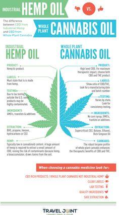 Hemp CBD Oil vs. Cannabis CBD Oil | TheTravelJoint.com