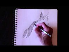 Drawing a horse's bust with Paolo Morrone