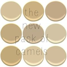 Benjamin Moore Colors  From top Left   Blanched Almond  Bridgewater Tan Best Benjamin Moore Warm Neutral Paint Colours  Yellow and Orange  . Great Neutral Paint Colors Benjamin Moore. Home Design Ideas