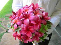 http://www.hawaiiweddingathome.com/bouquet/bouquet_gallery/Pink_Plumeria_Round.jpg