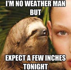 Creepy Sloth Weather Man
