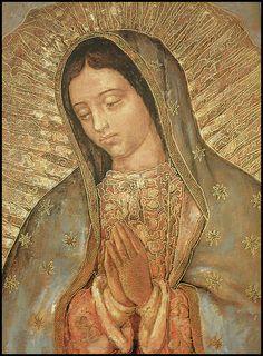 imagenes de la virgen de guadalupe | Virgen de Guadalupe (una imagen viva) | Flickr - Photo Sharing!
