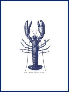 Blue lobster art print Ocean wall art old prints Nautical art print Ocean Decor Natural History Sea art print antique prints nature print Lobster Art, Lobster Drawing, Printable Animals, Nautical Art, Nautical Mile, Sea Art, Nature Decor, Coastal Style, Antique Prints