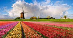 Los lugares más extraordinarios del mundo