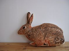 Bunny Pillow by shannonbroder on Etsy