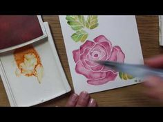 Easy watercolor technique with rose Wonder Stampin' Up! - YouTube