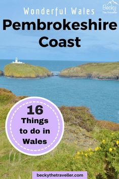 Here are the best things to do in Pembrokeshire on your trip, great ideas to plan your holiday if you are visiting Pembrokeshire Coast National Park, Wales. Travel Tips For Europe, Travel Destinations, Wales Holiday, Pembrokeshire Coast, Visit Wales, Solo Travel, Travel Uk, Adventure Activities, Wildlife Nature