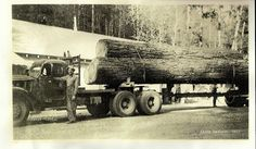 Floyd Traylor, with a fully loaded log truck somewhere in Western Oregon