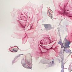 Roses. Watercolor. Fragment.