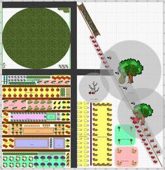 Garden Plan - 2014: First year vegetable garden, a very ambitious and rather wonderful first year garden, click here to see the spacing of crops.