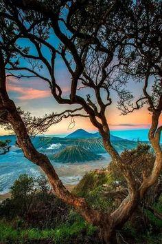 Mountain Photography, Landscape Photography, Nature Photography, Eagle Pictures, Komodo, Wildlife Art, Animal Shelter, Beautiful Landscapes, Wonders Of The World