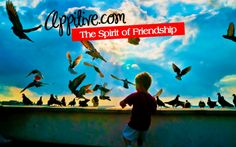 http://appitive.com/general/2012/08/05/the-spirit-of-friendship/