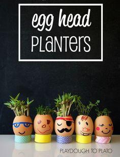 Super adorable DIY egg head planters. Fun science for spring!!