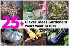 25-clever-gardening-ideas-praktic-ideas