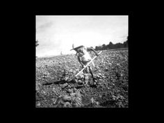 Grant Lazlo - Cotton Fields (Summertime) - YouTube Cotton Fields, France, Culture, Kinds Of Music, Music Publishing, Music Songs, Summertime, Youtube, Chilling