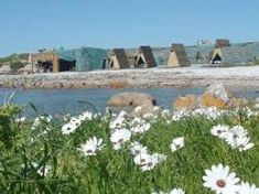 Image result for paternoster Wedding Venues Beach, Plants, Image, Planters, Plant, Planting