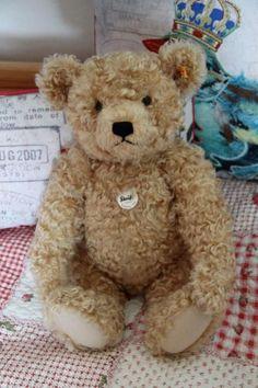 cute bear ♥.