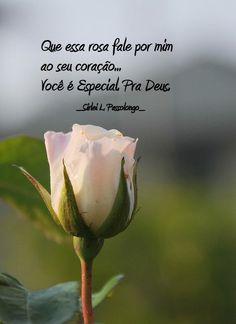 Que essa rosa fale por mim ao seu coração… você é especial…