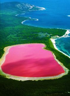 Solid bubblegum pink in color, Lake Hillier stands proud on middle island, the largest of the islands and islets making up the Recherche Archipelago in Western Australia. Exhibiting the so distinguishing feature of the Archipelago, the lake is surrounded by a rim of sandy beach and dense woodland with Eucalyptus and Paperbark trees.