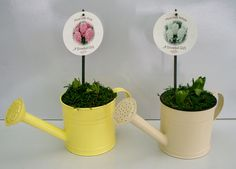 WATERING CAN X2 HYA (HM2)