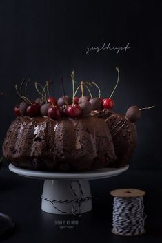 This chocolate cherry guglhupf has the perfect texture and is moist without crumbling apart when you slice it. With cherries on top! Easy Vegan Cake Recipe, Delicious Cake Recipes, Vegan Dessert Recipes, Yummy Cakes, Seitan, Traditional German Food, Chocolate Cherry Cake, Cupcakes, Vegan Treats