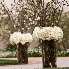 Wanna use regular branches with hanging tea lights and shyt and hydrangea flowers or other flowers would be pretty